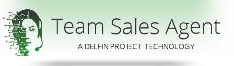 Team Sales Agent